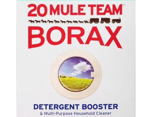 How To Use Borax for Tick Control