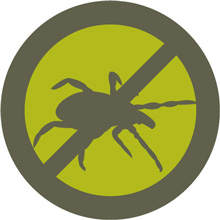 Tick Prevention - How to Keep Ticks Off You and Your Pets