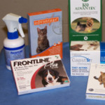 Tick Product Comparison – The Best Tick Protection and Prevention