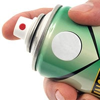 Spray an indoor insecticide