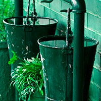 Remove standing water sources